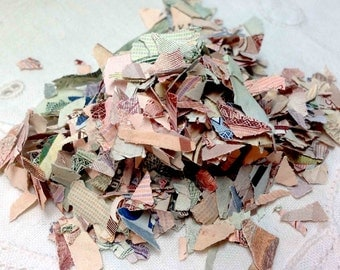 Cash Money Dollars - Canadian Shredded - Real Canada Scrap Paper Currency Confetti Gag Gift 1/4 cup Scrapbooking, Collage or Stuffing? 2 oz