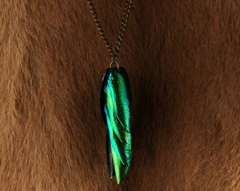 Beetle Wing Cluster Necklace. Bug. Weird. Handmade