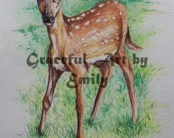 Original Watercolor Painting Illustration Fawn Deer