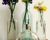 Vintage Bottles Set of 4 Blue, Clear Bottle Collection Vintage Glass