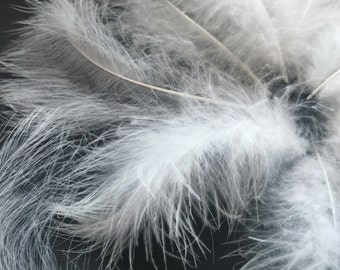 FREE SHIPPING 15 Rooster Saddle Feathers  White