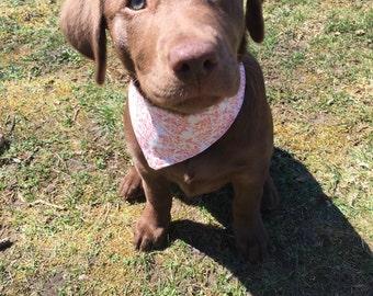 Dog Bandana | Doggy Bandana | Puppy Bandana