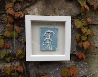 Framed original wall art, clay impression of wild garlic seed heads, blue and white in a white wooden frame.