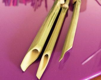 Bamboo Calligraphic pen