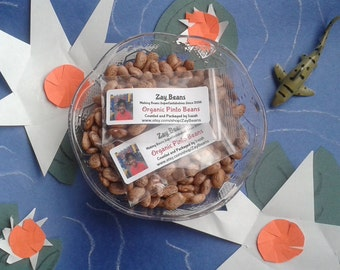 Organic Dried Pinto Beans (30 Beans)  for Planting