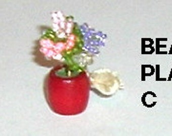 Miniature BEADED PLANT (C)