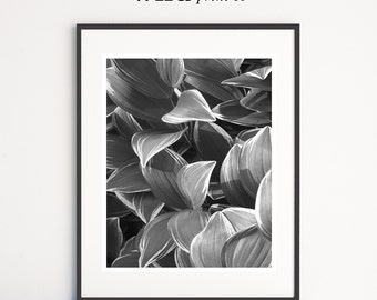 Black and White Leaf Print, Plant Wall Art, Plant Leaves Print, Leaf Print, Plant Photography, Nature Print, Printable Art, Instant Download
