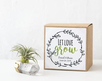 Set of 6 Gold Dipped Air Plant Rustic Wedding Favor, Bridal Shower Hostess Gift, Bridal Shower Favor, Engagement Favors, Let Love Grow