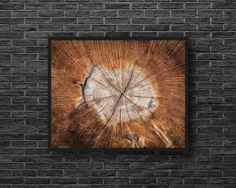 Wood Texture Print - Wood Structure Photo - Wood Photography - Stump Photo - Brown - Nature Wall Decor - Zen Photo - Feng Shui Wall Decor