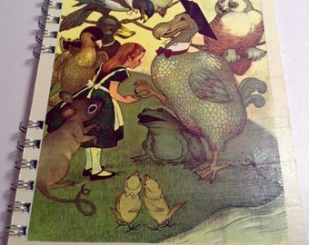 Alice and the Dodo Notebook