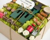 Fairy Garden Kit - Fairy Garden Accessories - Fairy Garden Supply - Fairy Garden Decor - DIY Fairy House - moss, squirrel, furniture, items