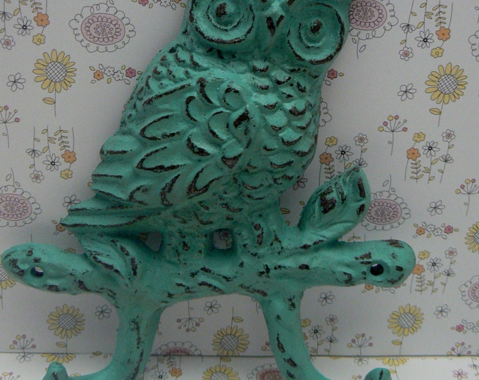 Owl Cast Iron Wall Hook Turquoise Aqua Shabby Chic Woodland Home Decor
