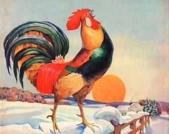 vintage mid century rooster in winter illustration digital download