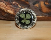 Real Four Leaf Clover Pin Shamrock Brooch