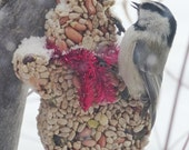 New! Bird Seed Feeder - Snowman - Organic - Wreath