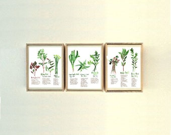 Set of 3 vietnamese herb prints, 8X10 print, Watercolor painting, Kitchen decor, Healing herb poster, Medicinal herbs, Botanical art Vietnam