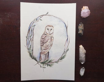 barn owl - original watercolor painting - nature - botany