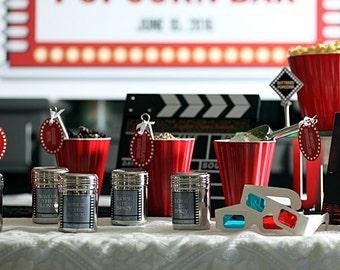 Popcorn Bar Seasoning Shakers - DIY Popcorn Bars at Wedding, Retirement, Baby Shower Birthday Summer BBQ