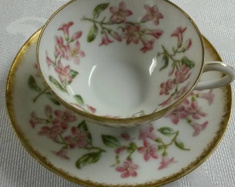 Limoges Tea Cup and Saucer; T&V; Hand Painted; Demi Set  circa 1892-1907   898