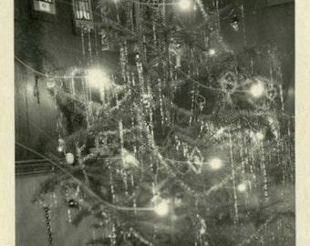 "Vintage Photo ""Christmas Glow"" Holiday Tree Decor Snapshot Antique Photo Old Black & White Photograph Found Paper Ephemera Vernacular - 73"