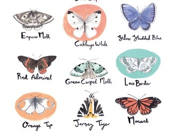 British Butterflies and Moths A3 Art Print