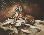 Sumatran Tiger Watercolor Painting, a Tired Tiger Yawning, Animal Art that is Mounted and Framed, Fine Art by Casey Perez