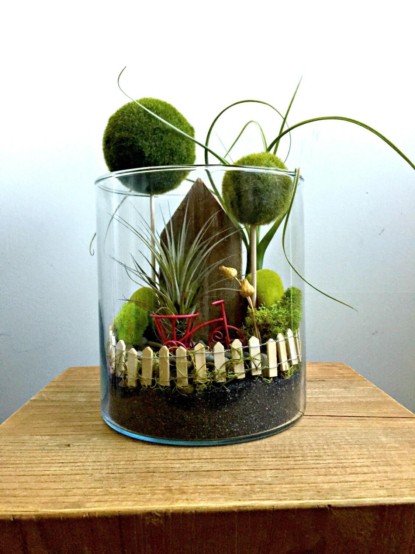 Home sweet home large air plant terrarium glass vase for Air vase