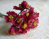 Millinery Posies Dark Red Burgundy Bunch of Twelve for Hats, Weddings, Corsages, Crafts, Crowns 2FN0032BU