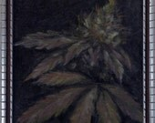 Marijuana Painting - Original Oil Painting of a marijuana plant budding in a vintage frame