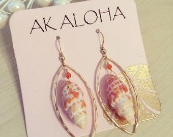 Miter Shell Hoop Earrings, Hawaii Earrings, Hawaii Shell Earrings, Gold Shell Earrings