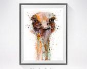 Ostrich watercolor painting print, Ostrich art, animal art, illustration, animal watercolor, animal poster, bird illustration, bird art