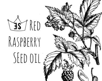 Red Raspberry Seed Oil - Cold Pressed & Unrefined Red Raspberry Oil - Raspberry Oil Sunscreen - Natural Sunblock