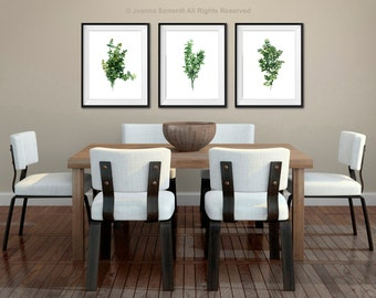 Thyme Kitchen Art Print, Set of 3 Watercolor Painting, Green Wall Decor, Medicinal Herbs Chart, Thyme Illustration Gift Idea for Women