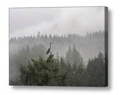 Blue Heron, Wall Art, Canvas Art, Pacific Northwest, Misty Photograph, Large Art, Landscape Photograph, Nature Photography, Bird Photograph