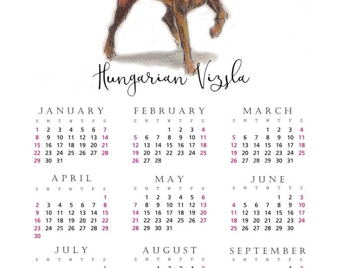 Hungarian Vizsla 2017 yearly calendar