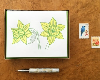 Daffodils, Boxed Set of 8 Letterpress Cards, Blank Inside