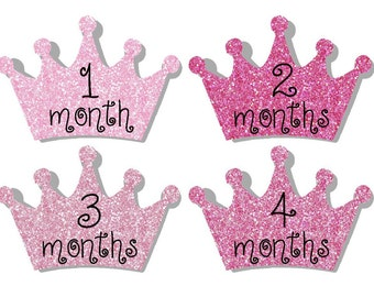 Monthly Stickers- Milestone Sticker- Baby Month Stickers- Baby Girl Month Stickers- 12 month stickers- Milestone Baby Month Stickers - G44