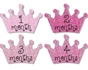 Monthly Stickers- Milestone Sticker- Baby Month Stickers- Baby Girl Month Stickers- 12 month stickers- Milestone Baby Month Stickers - G44