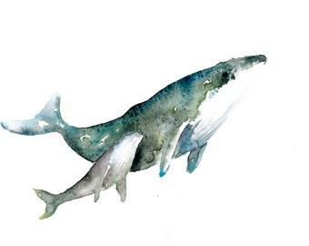 Humpback whale- Print