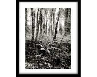 black and white landscape photography, nature photos, black and white nature photography, Ireland photography, black and white wall art