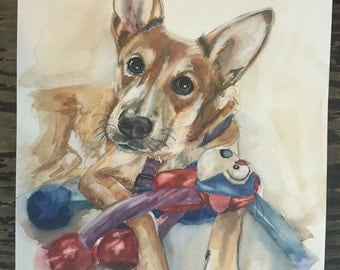 Custom made pet