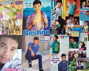 ROSHON FEGAN ~ Shake It Up, Camp Rock, One Night, Ty Blue ~ Color Clippings, Articles, Pin-Ups for Scrapbooking