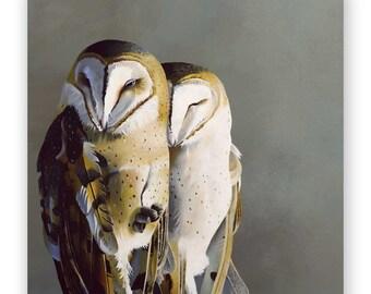 Barn Owl Pair - 10 x 10 Wings on Wood Decor