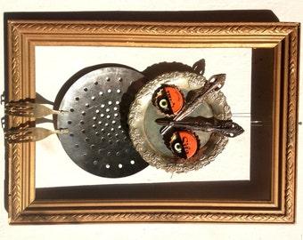 Owl in a frame