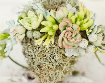 Succulent wedding crown Woodland bridal headband Rustic halo Succulent wreath Tiara Ready to send Green headband Naturel accessories