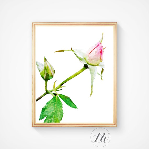 Wall Art Prints Download : Wall art home decor prints and posters vintage botanical