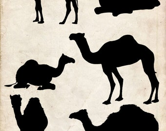 Camel Silhouette ,6 png Clipart , Instant Download,  clipart