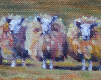 Three Fluffy Sheep 3x9