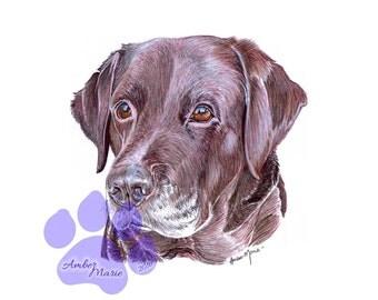 A4 Pet Portrait