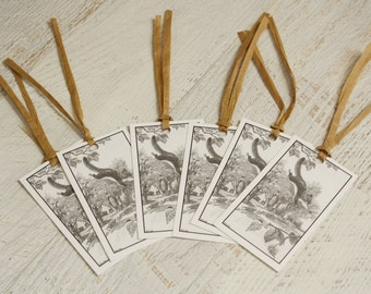 squirrel gift tags | set of 6